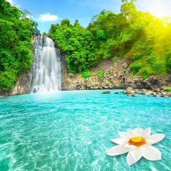 Beautiful Waterfall HD Wallpaper Nature Wallpapers