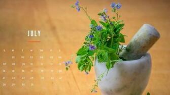 HD July 2019 Calendar Wallpaper   Album on Imgur