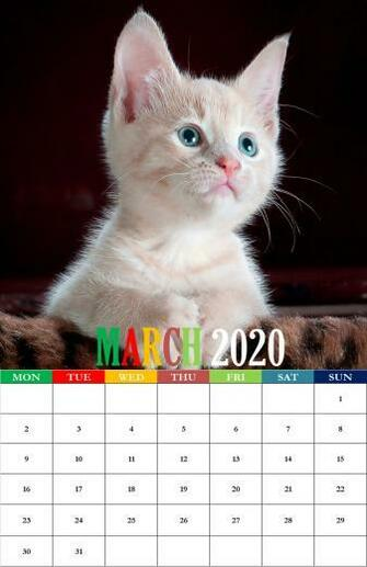 2020 March Calendar Wallpapers For iPhone Desktop Mobile Tablets