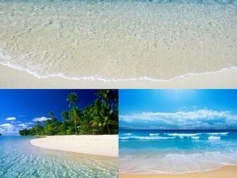 10 Best Animated Beach Desktop Wallpapers for Summer