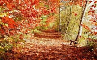 Beautiful Fall Backgrounds For Desktop Wallpapers beautiful autumn
