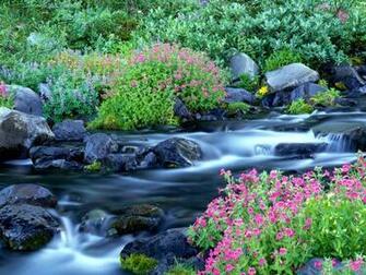 Nature Scene desktop images Background HD Wallpaper for Desktop