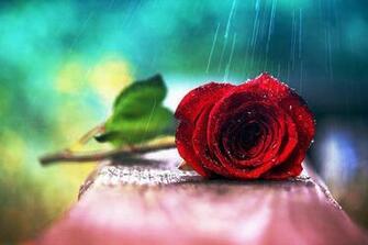 Dreamtime images l o v e HD wallpaper and background photos 38337175