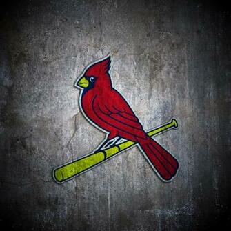 St louis cardinals baseball star wallpaper   3337   HD