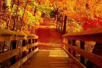 first day of autumn 2014
