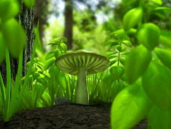 WnP Wallpapers Pictures Green Mushroom Wallpaper