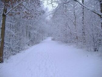 Download Winter Scene wallpaper Winter scene 27
