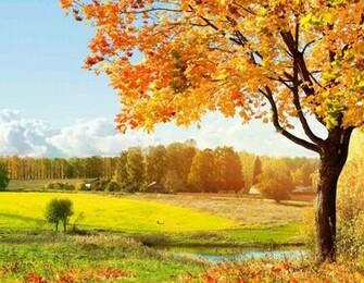 Autumn Desktop Backgrounds Wallpaper ThemesCompany