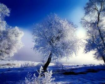 Winter images Wonderful Winter wallpaper photos 27867218