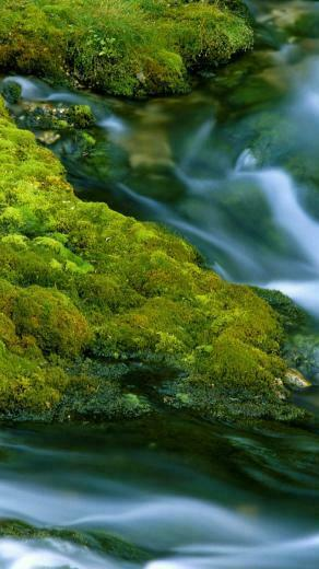 Best Nature Iphone Wallpapers   iPhone Wallpapers