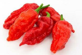 Ghost Pepper Wallpapers