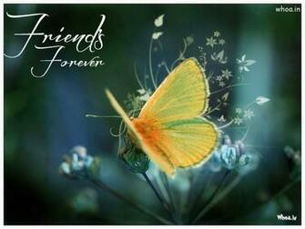 Friends Forever Butterfly Wallpaper