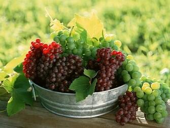 Fruits Wallpapers Album 6 FunJunktion