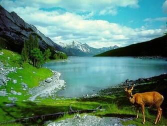 Mountain and Lake HD Wallpaper Hd Wallpaper