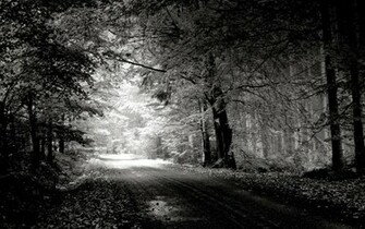 Photography Black And White black and white nature wallpaper hd
