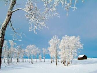 Tag Winter Desktop Wallpapers Backgrounds Photos Picturesand