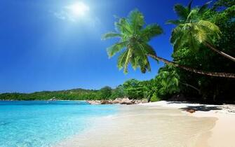 Tropical Carribean Beach Wallpaper 1964 Wallpaper