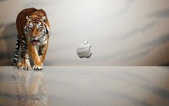 Cool Wallpapers Pics Cool Wallpapers For Mac