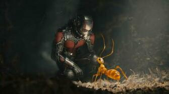 Ant Man Wallpaper Backgrounds