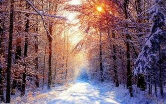 Beautiful winter day wallpaper 8655   Open Walls