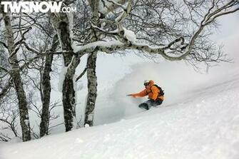 Wallpaper Wednesday Powder Surfing in Japan TransWorld SNOWboarding