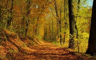 Wallpapers Beautiful Autumn Scenery Desktop BackgroundsBeautiful