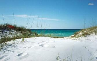 White sanded beach in Florida wallpaper   Beach wallpapers   20723