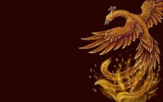 Phoenix Wallpaper Background Theme Desktop