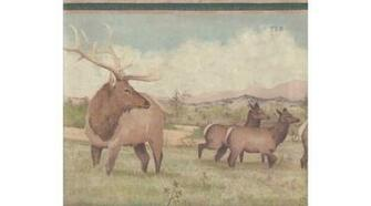 Home Beige Green Deer Scenery Wallpaper Border