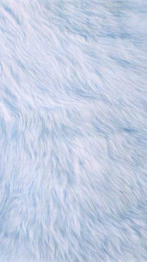 Baby Blue Fur iPhone Wallpaper Feel Me Baby blue wallpaper