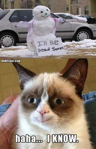 grumpy cat christmas snow man melting what makes grumpy cat happy