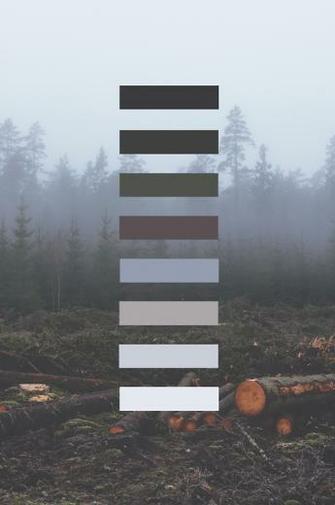grunge palette Tumblr