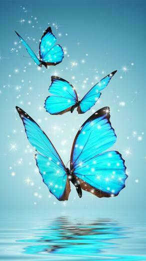 30 COLORFUL BUTTERFLY WALLPAPERS FREE TO DOWNLOAD Pictures