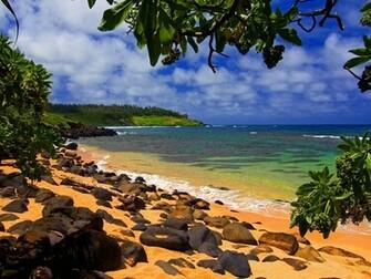 Beach Shade Hawaii Wallpapers HD Desktop Wallpaper 1600 1200jpg