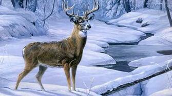 deer wallpapers deer hd wallpapers deer hd wallpapers deer hd