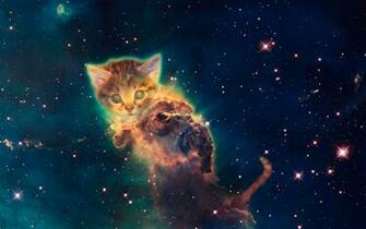 Galaxy Cat Wallpaper 69 images