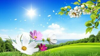 flowers for flower lovers Flowers wallpapers natural sceneries