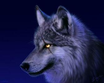 Wolf Wallpaper 10742 Hd Wallpapers in Animals   Imagescicom