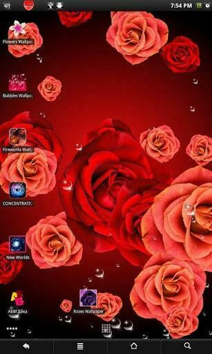 View bigger   Roses live wallpaper for Android screenshot