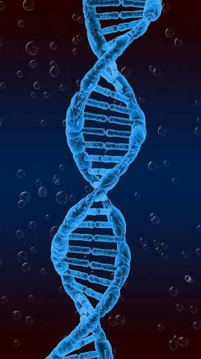HD wallpaper dna spiral genetics twisted Wallpaper Flare