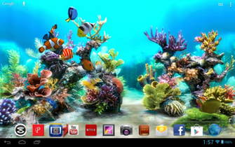live wallpaper background of a fish tank with beautiful backgrounds