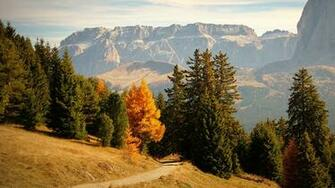 Images Italy Bolzano Trail Nature Spruce Autumn Mountains 1366x768