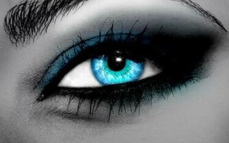 Wallpapers Jokes Blue Eyes Photos HD 1440x900 Desktop Wallpapers