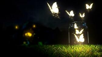 Illumination butterflies in night HD Wallpapers Rocks