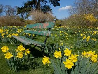 The Spring Wallpapers Category Of Hd Wallpapers Spring