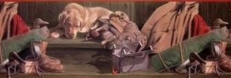 Kevin Daniel Hunting Dogs Wallpaper Border 10030301 eBay