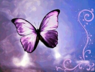 butterfly wallpaper mybarbiegame cute butterfly wallpaper cute purple