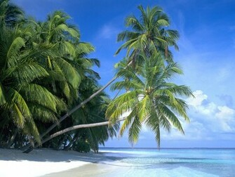 Caribbean Island Wallpaper Images Pictures   Becuo