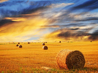 wallpapers hd desktop wallpapers online most spectacular farm hd