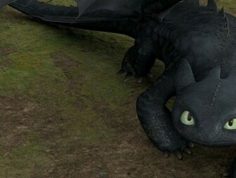 to Train Your Dragon 2 Pictures Wallpapers and Desktop Backgrounds